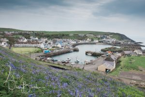 views over portpatrick harbour from the portpatrick hotel wedding venue